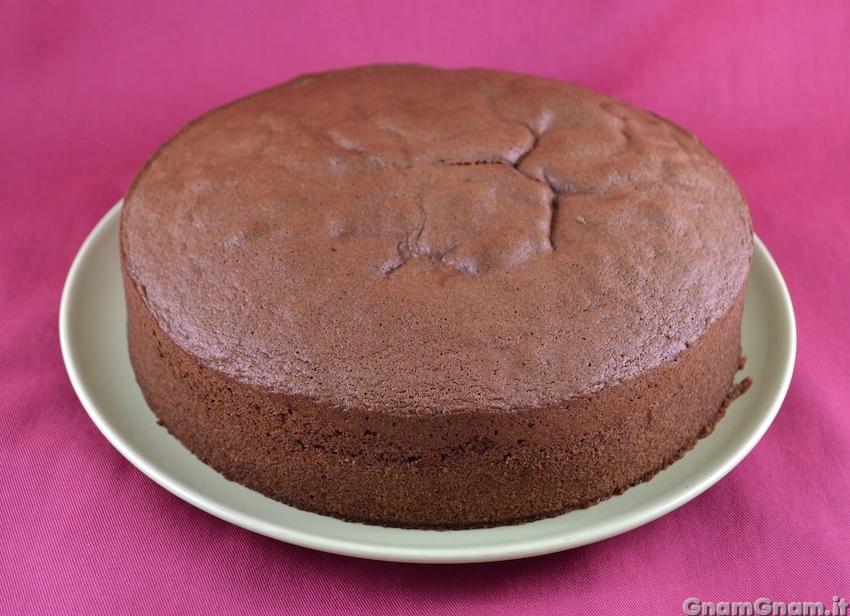 Ricetta Pan Di Spagna Al Cioccolato Bimby.Pan Di Spagna Al Cacao La Ricetta Di Gnam Gnam