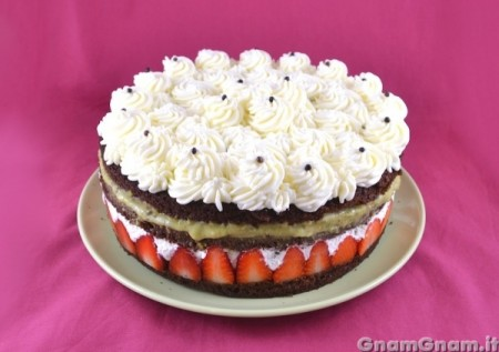 Torta Gnam Gnam